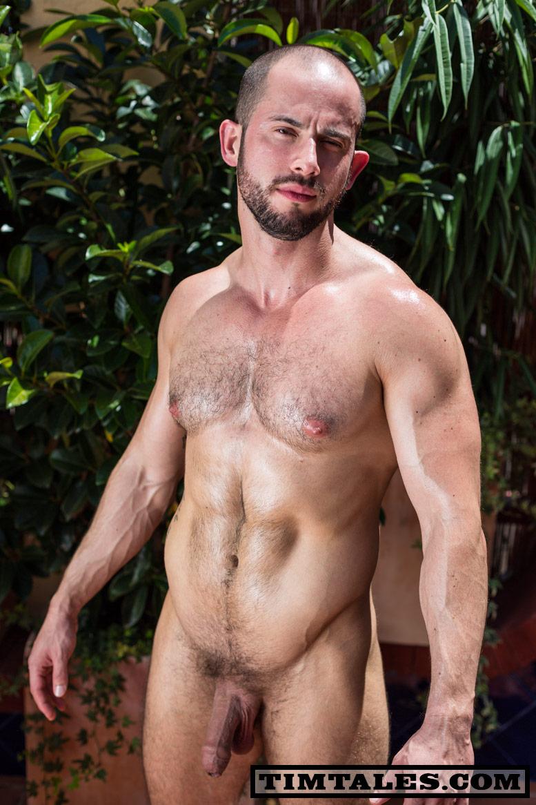 bear muscle Big gay